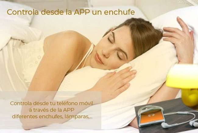 Enchufe-WiFi-Alarma