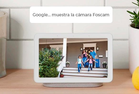 Foscam-D4Z-Google