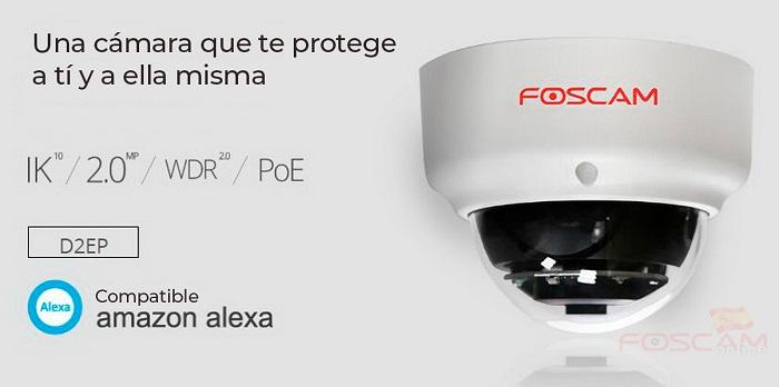 Foscam-D2EP-anti-vandalica